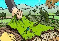 Đất trong quy hoạch có khai nhận di sản thừa kế được không?